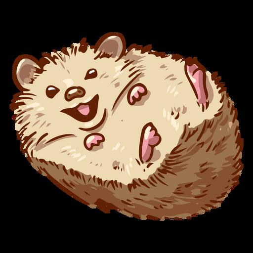 Hedgehog animal laughing