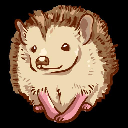 Happy hedgehog pet animal