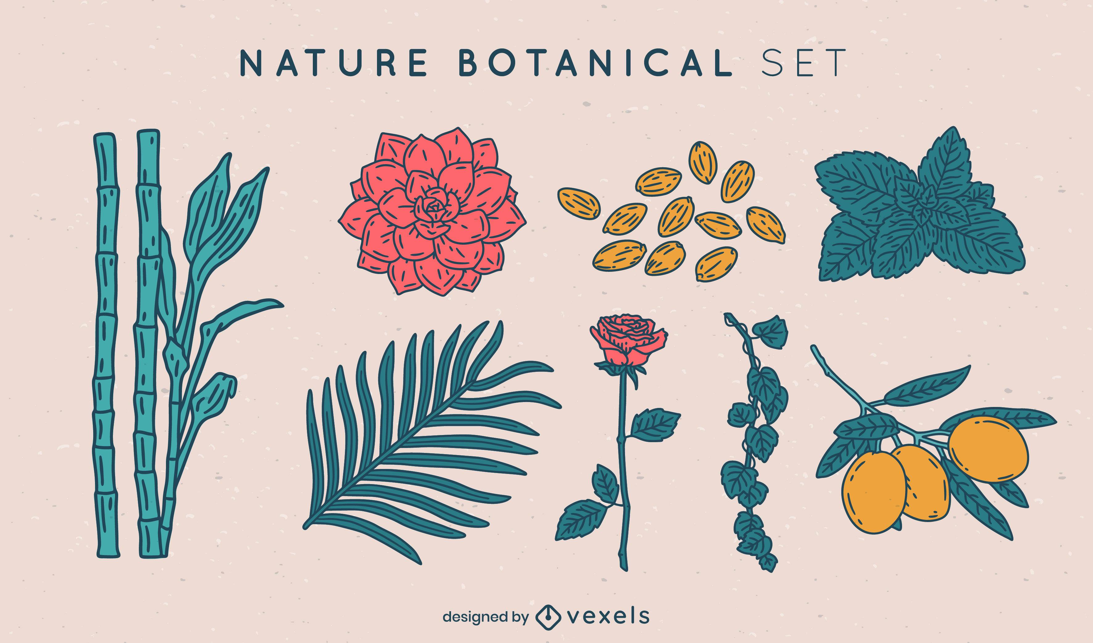 Nature botanical elements color stroke set