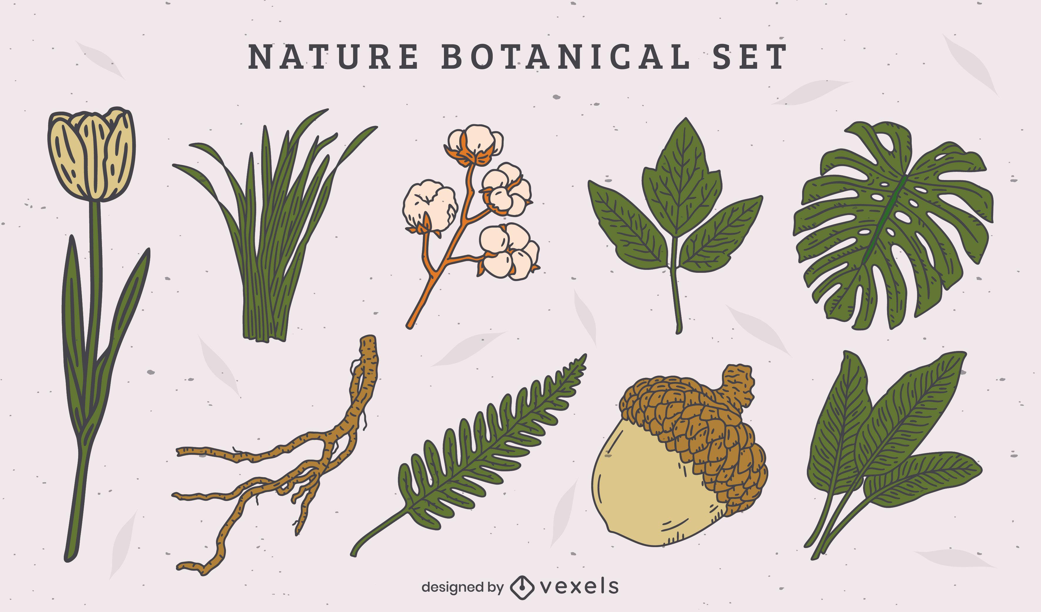 Natural leaves and botanical elements set