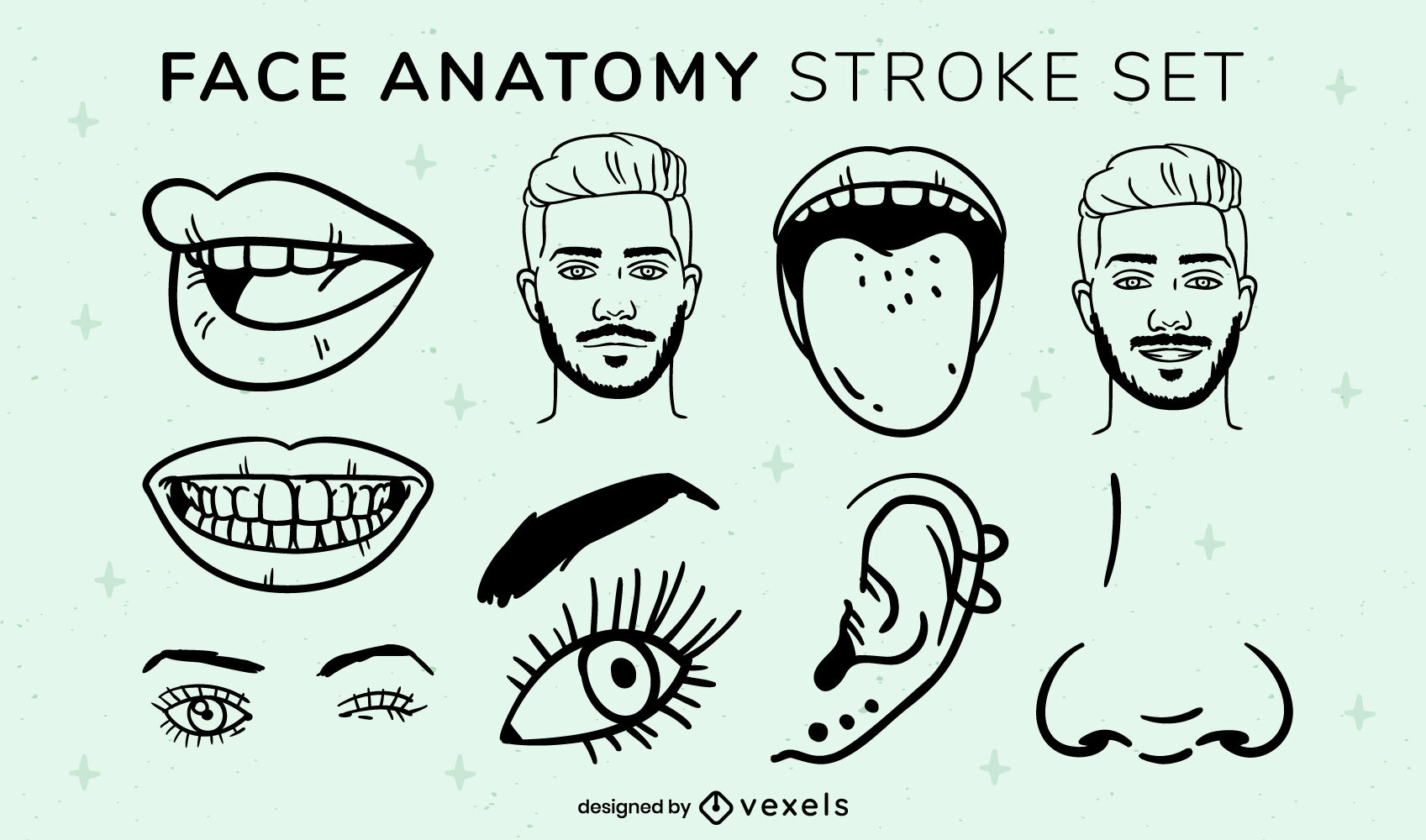 Conjunto de traços de elementos de anatomia facial