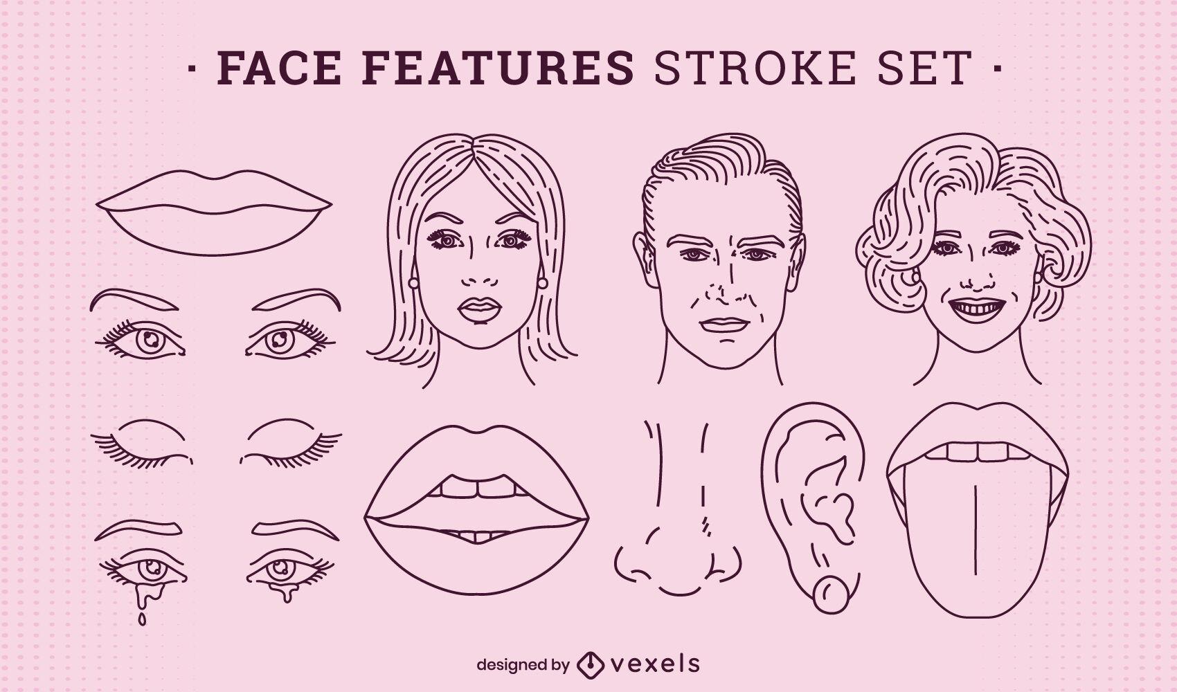 Características de la cara conjunto de anatomía trazo