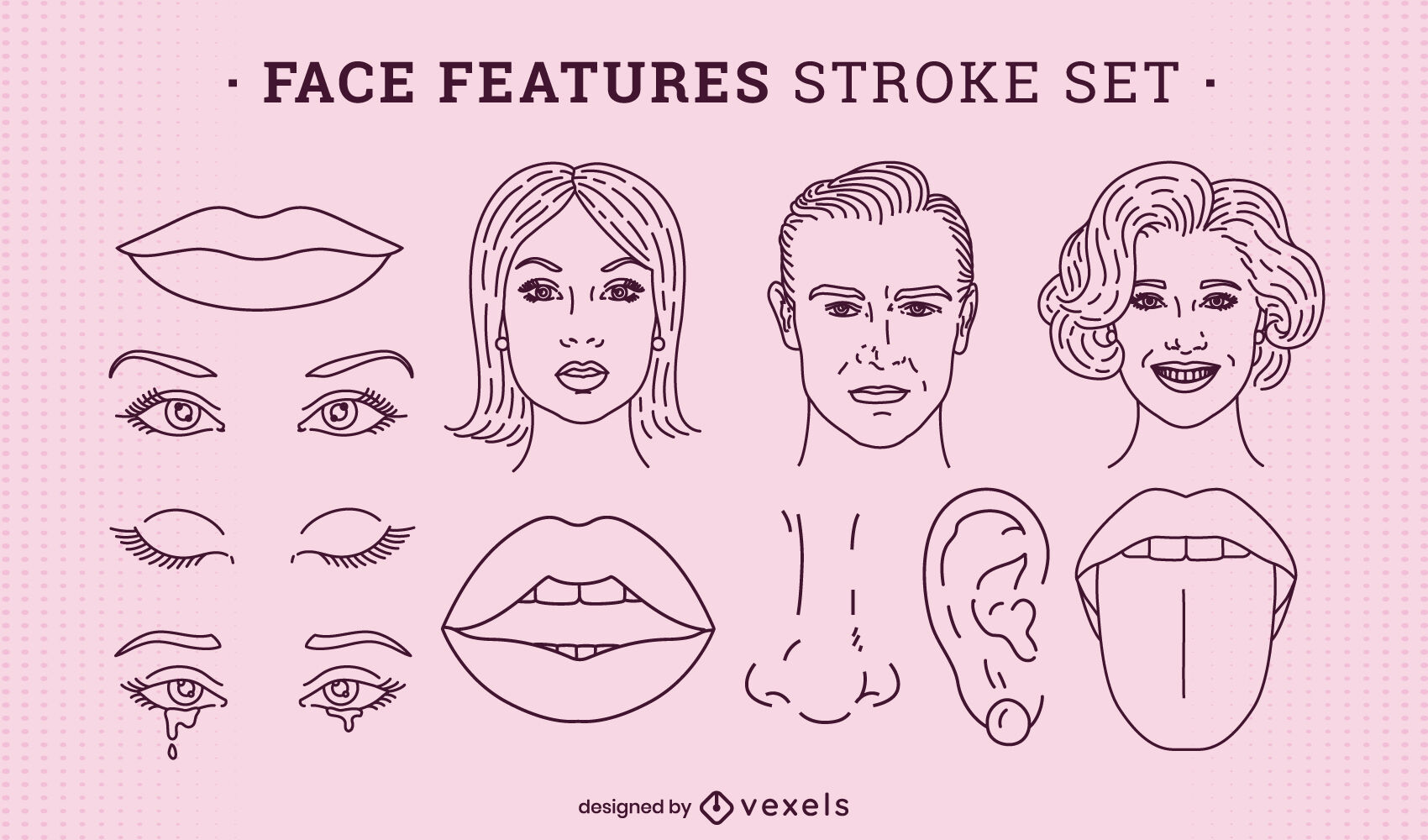 Face features anatomy set stroke
