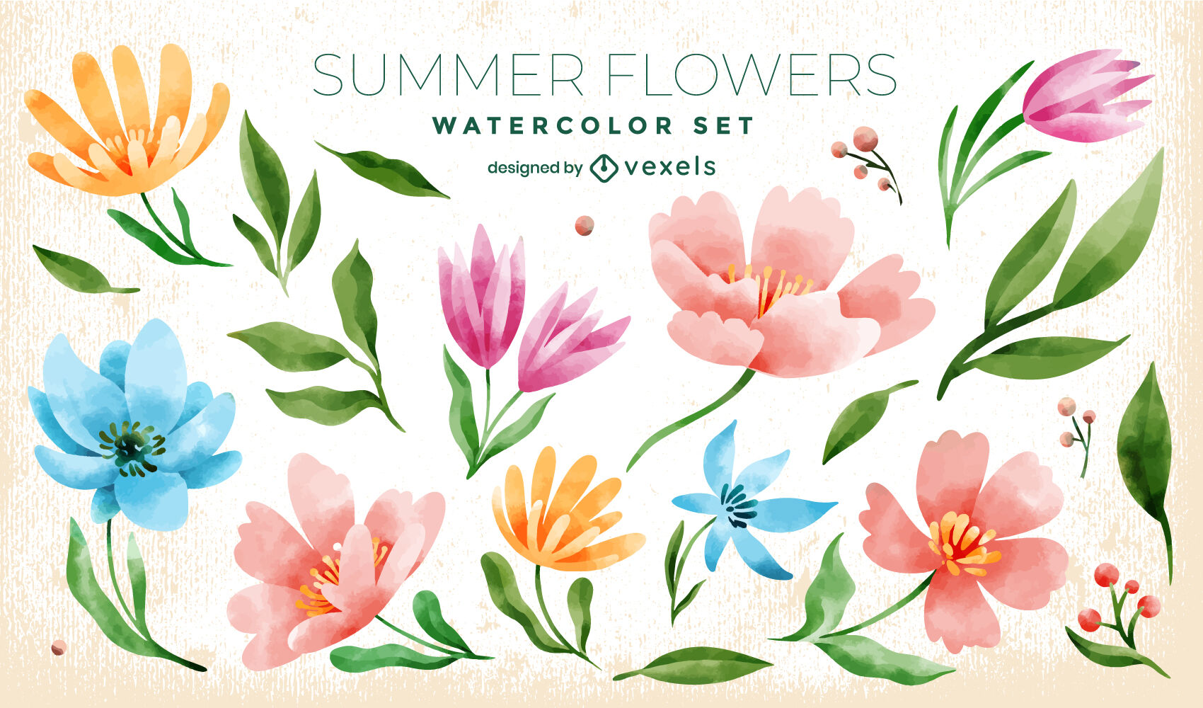 Colorful flowers watercolor nature set