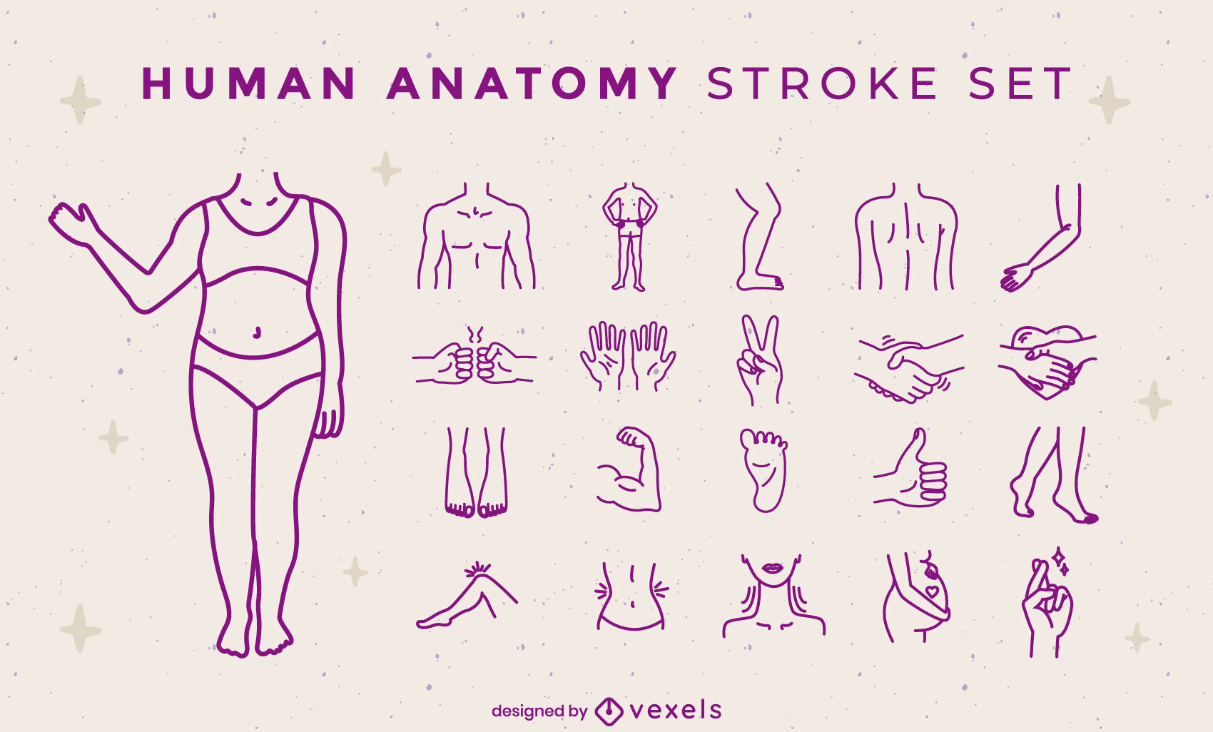Human anatomy body parts stroke set