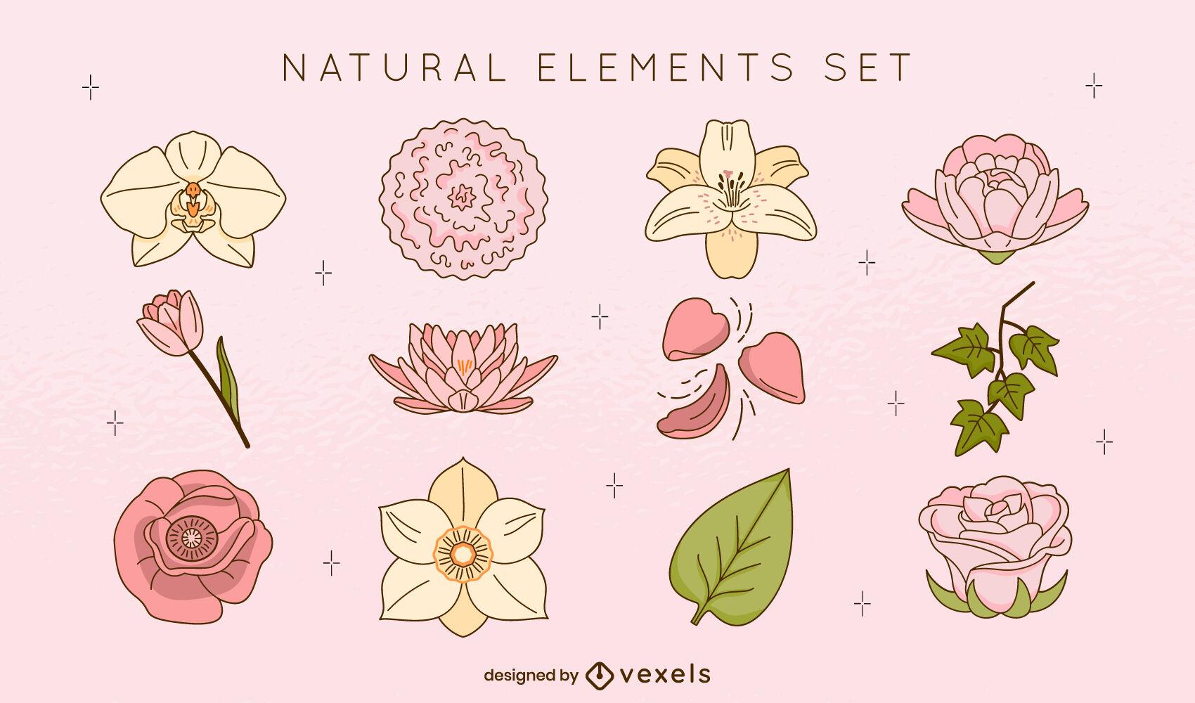 Flores y hojas trazo de color de elementos naturales.