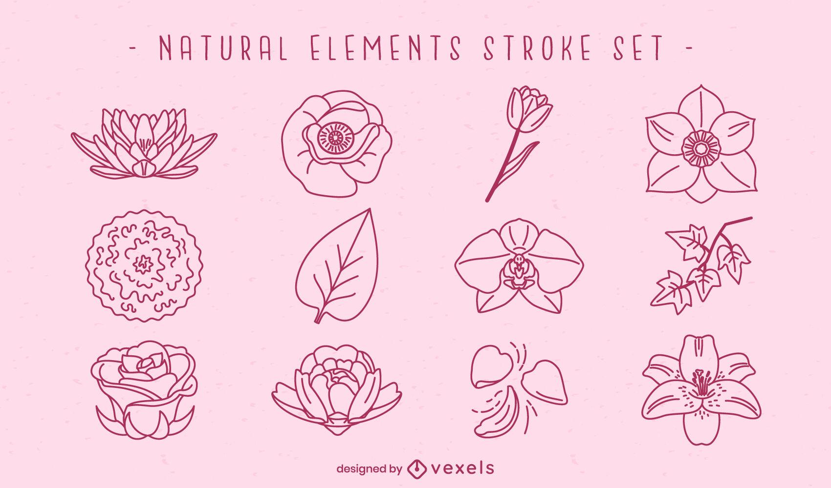 Trazo de elementos naturales de flores y hojas.