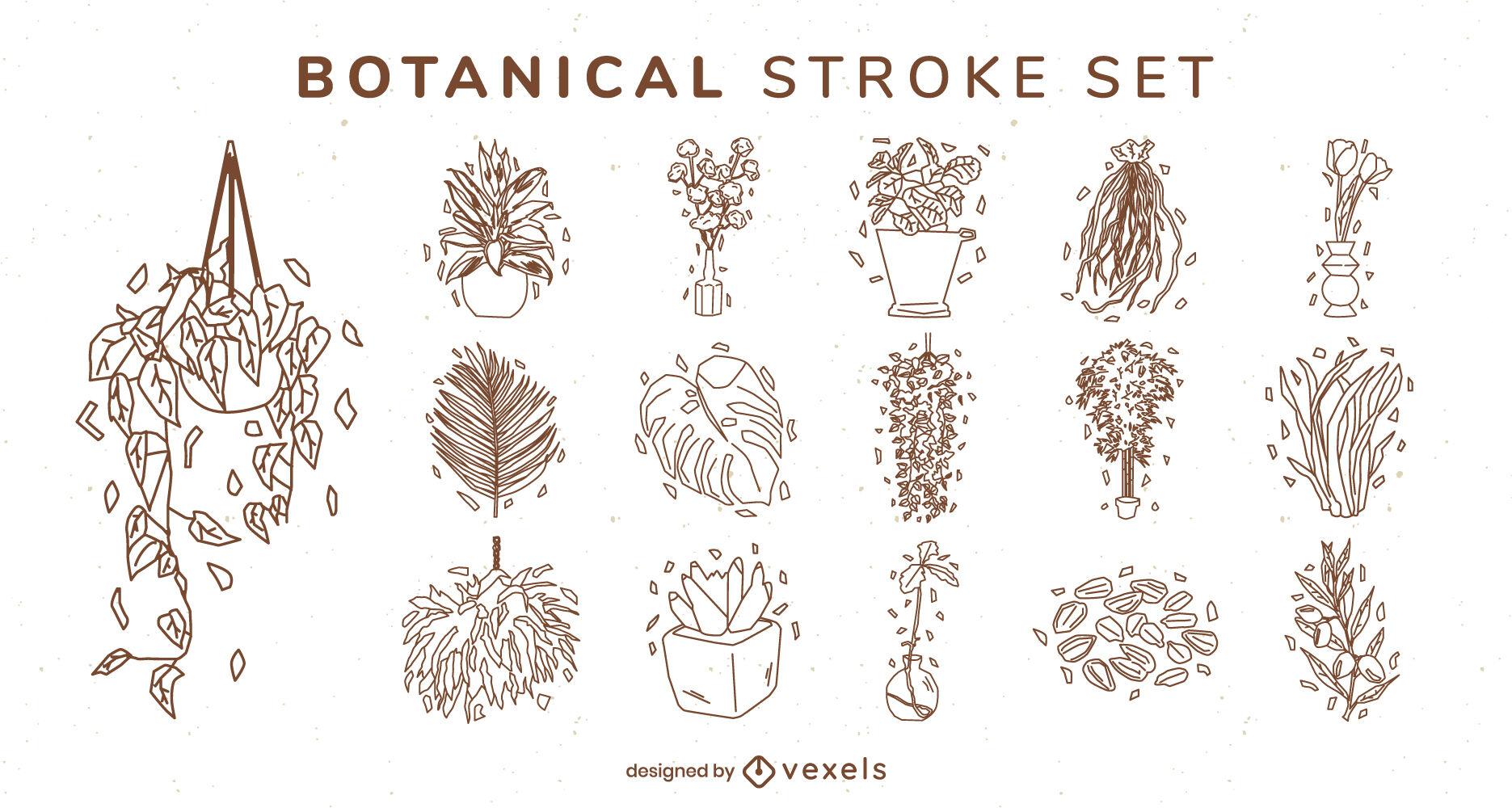 Conjunto de trazos de plantas y hojas de la casa.