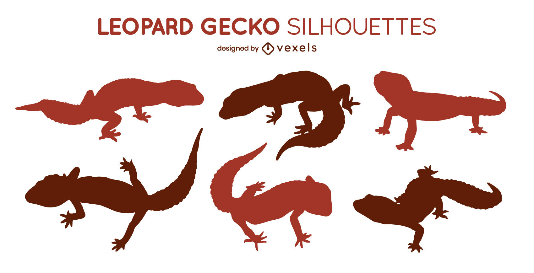 Conjunto de siluetas de geckos leopardo