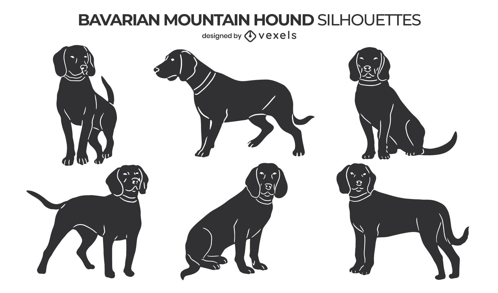 Conjunto de perros Bávaro Mountain Hound