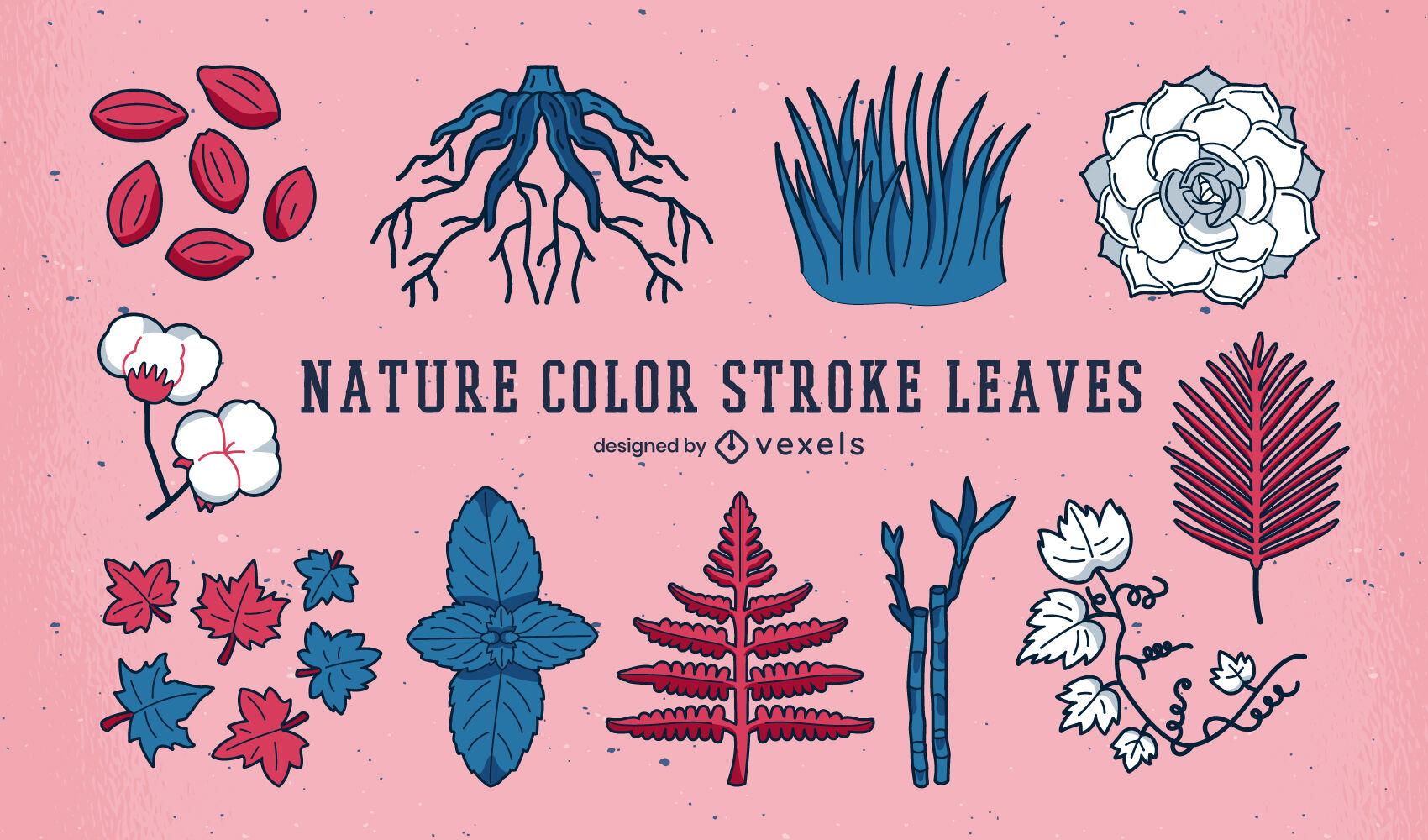 Conjunto de elementos naturais de folhas e plantas