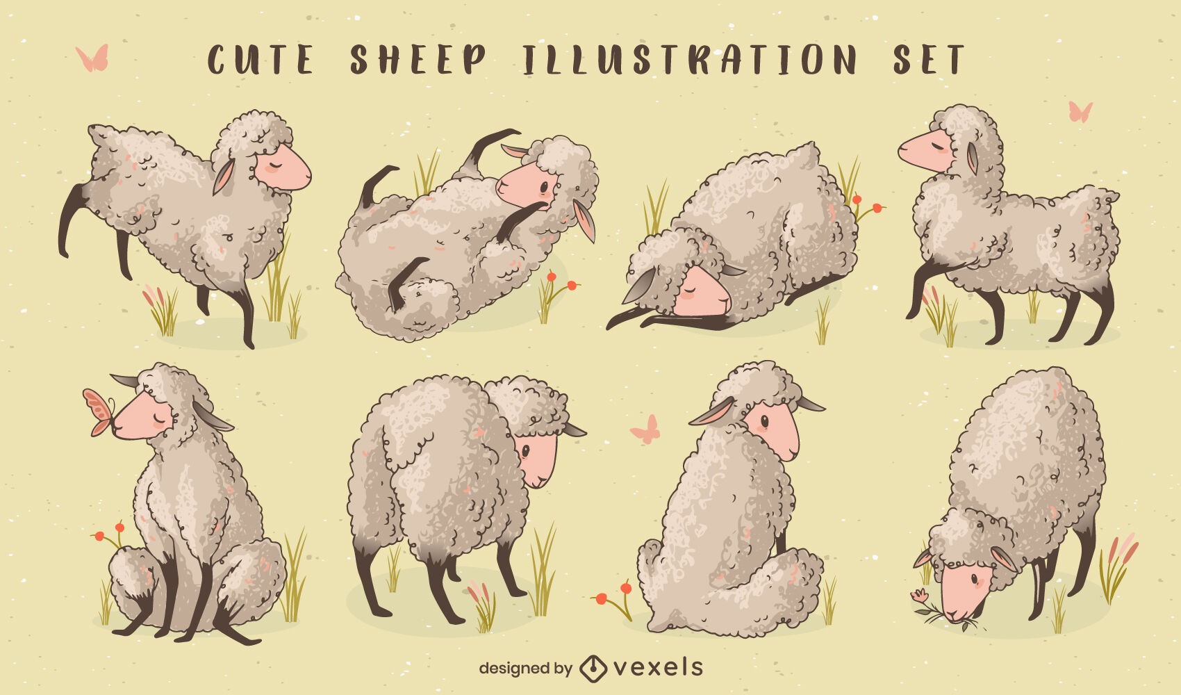 Sheep farm animals illustration set