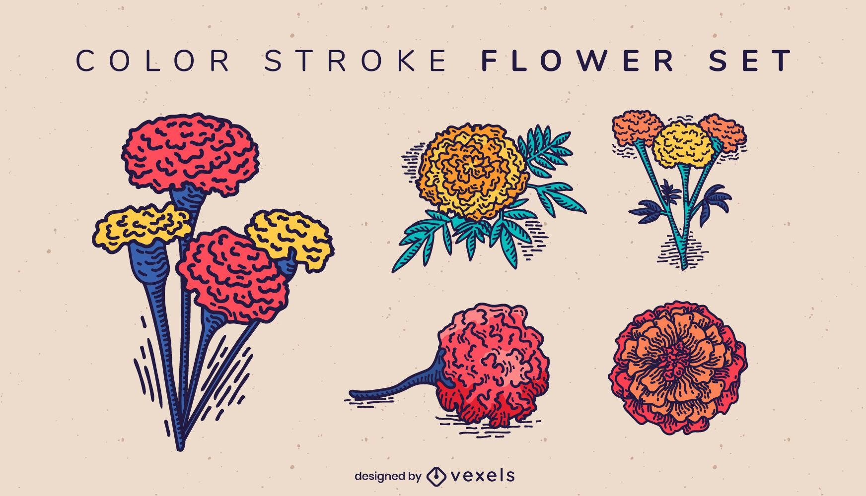 Conjunto de naturaleza de ramos de flores de caléndula