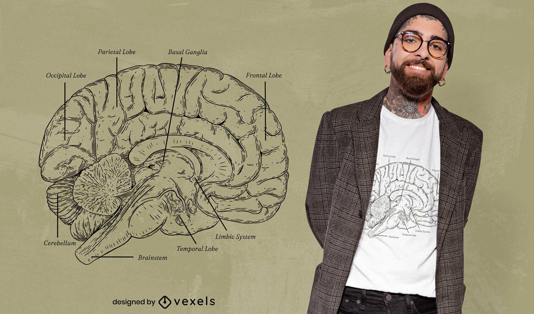 Impresionante dise?o de camiseta de anatom?a cerebral.