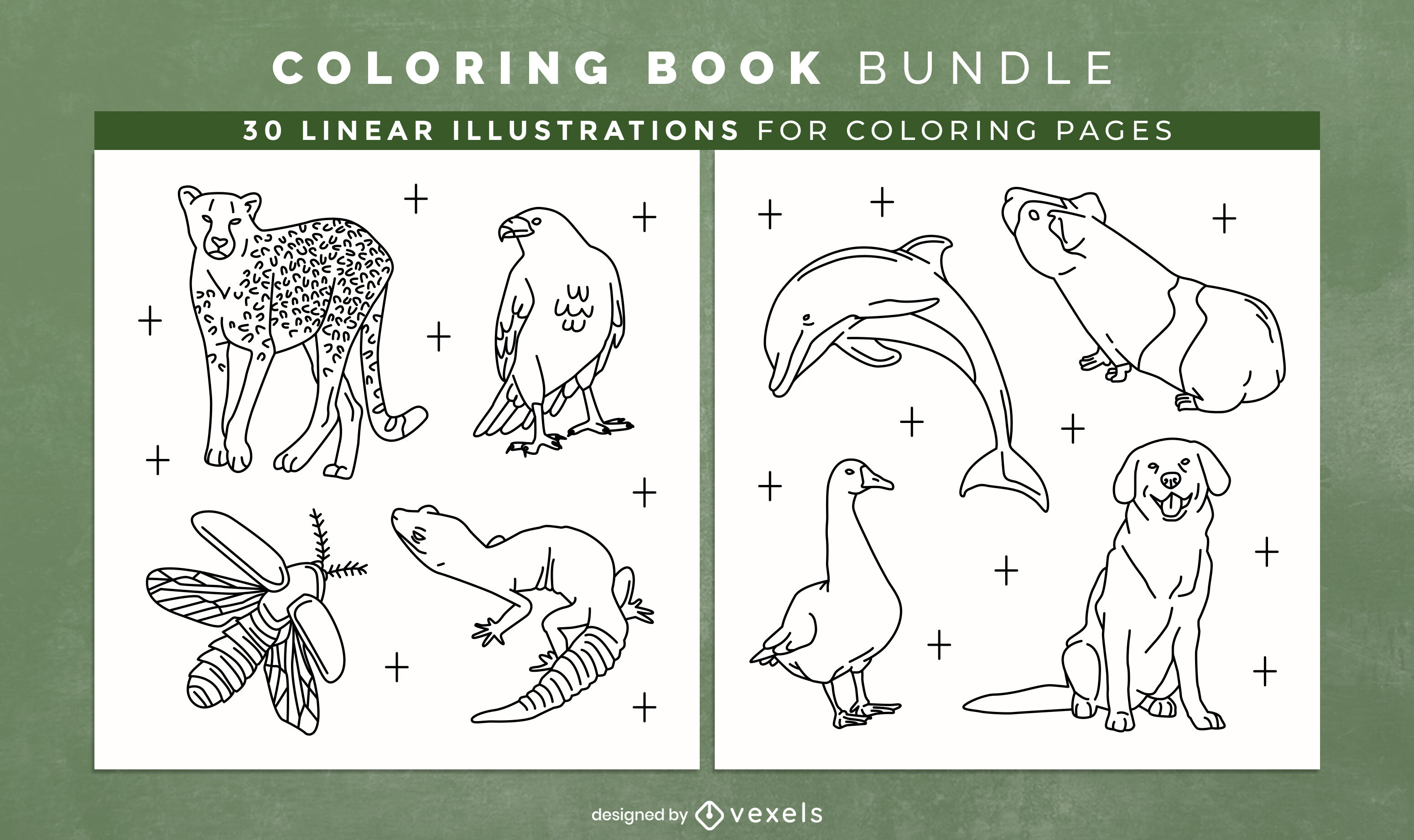 Awesome animals coloring book interior design