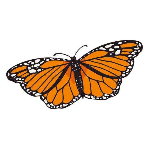 Day of the dead butterfly color stroke