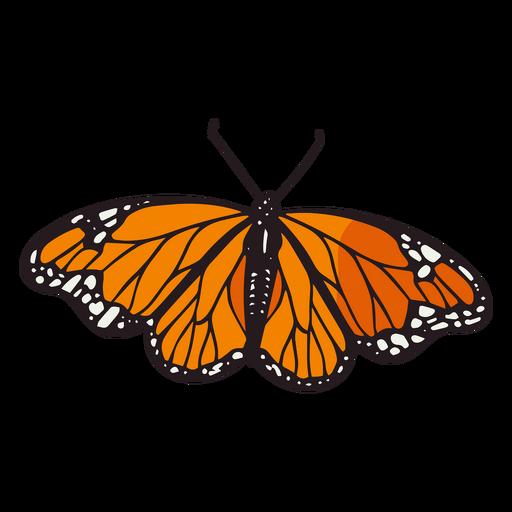 Day of the dead orange monarch butterfly color stroke