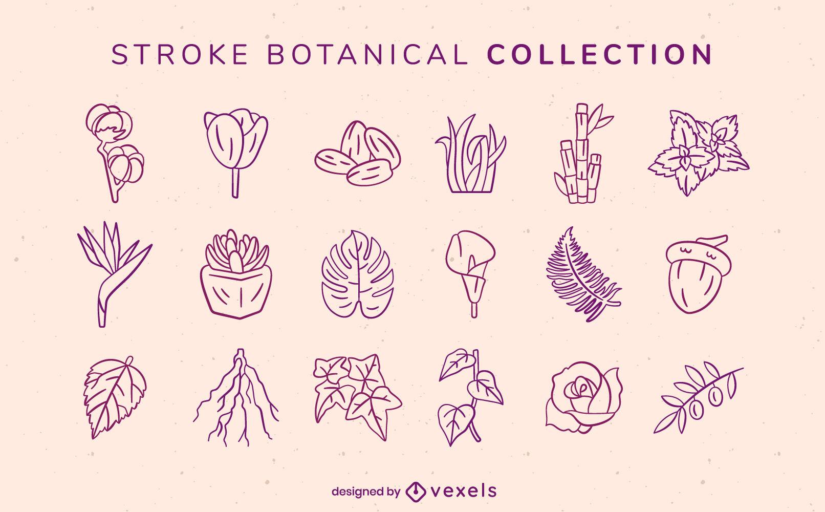 Botanical flowers and leaves stroke set
