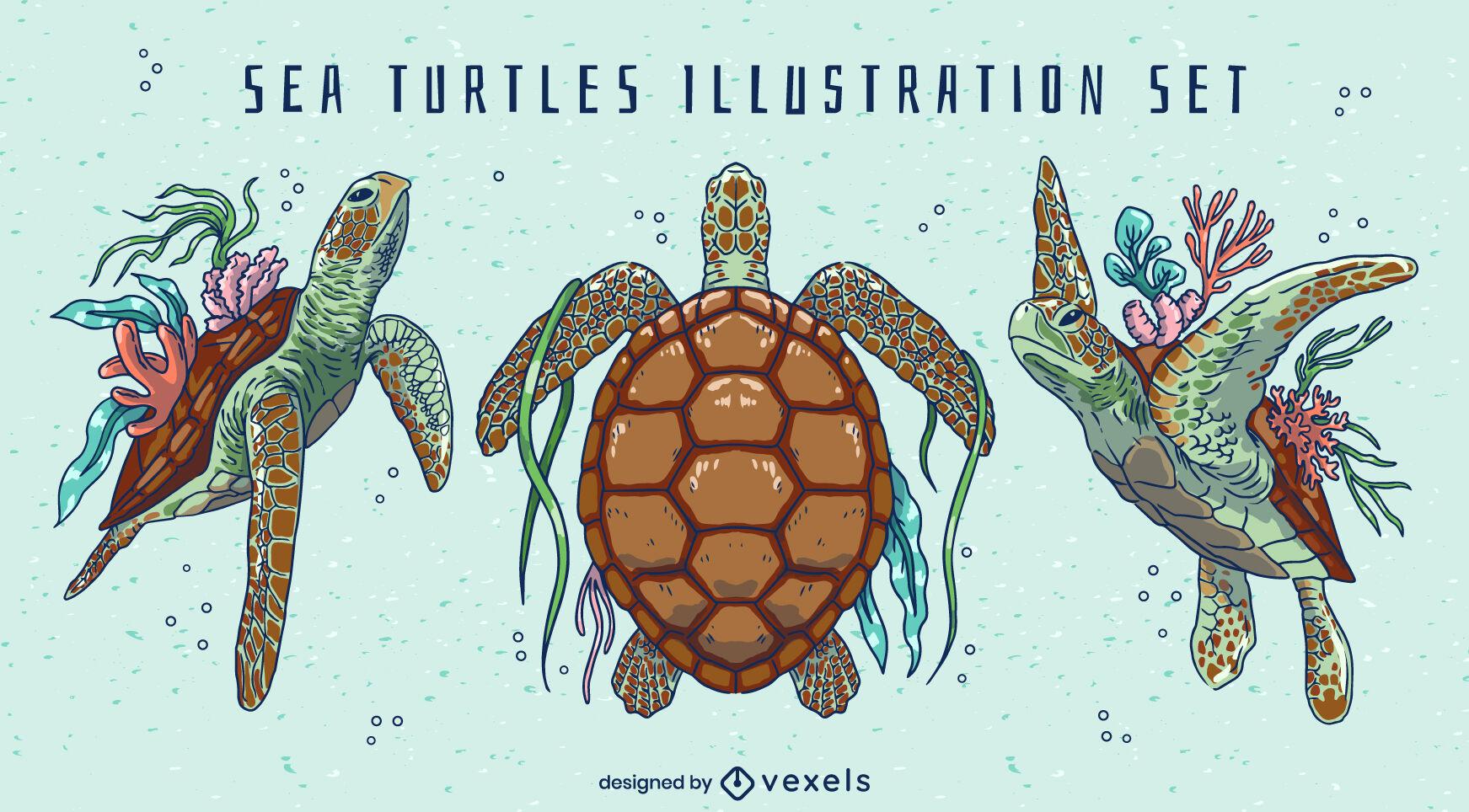 Sea turtle animals swimming nature set