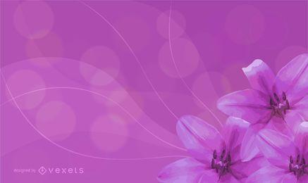 Sonhos do lírio em plena floração