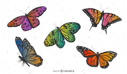 Vector material exquisita mariposa