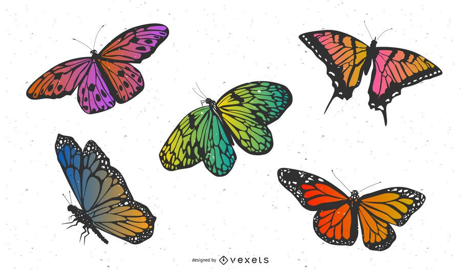 Vector material exquisite butterfly