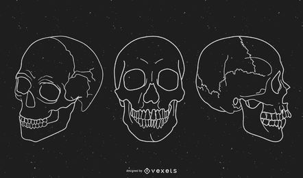 Black and White Skull Vector