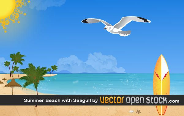 Playa de verano con gaviota.