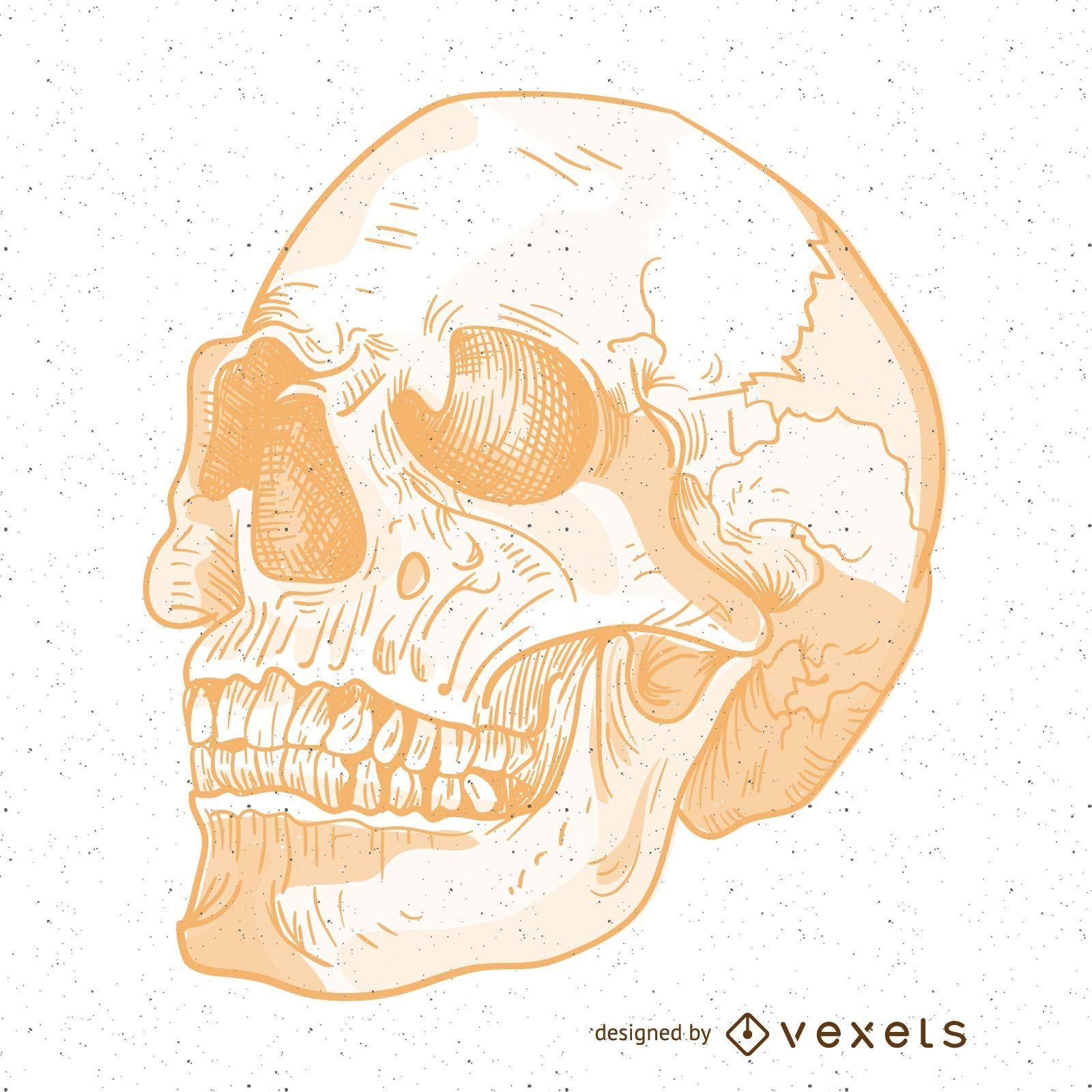 Ilustração de crânio de vetor perverso