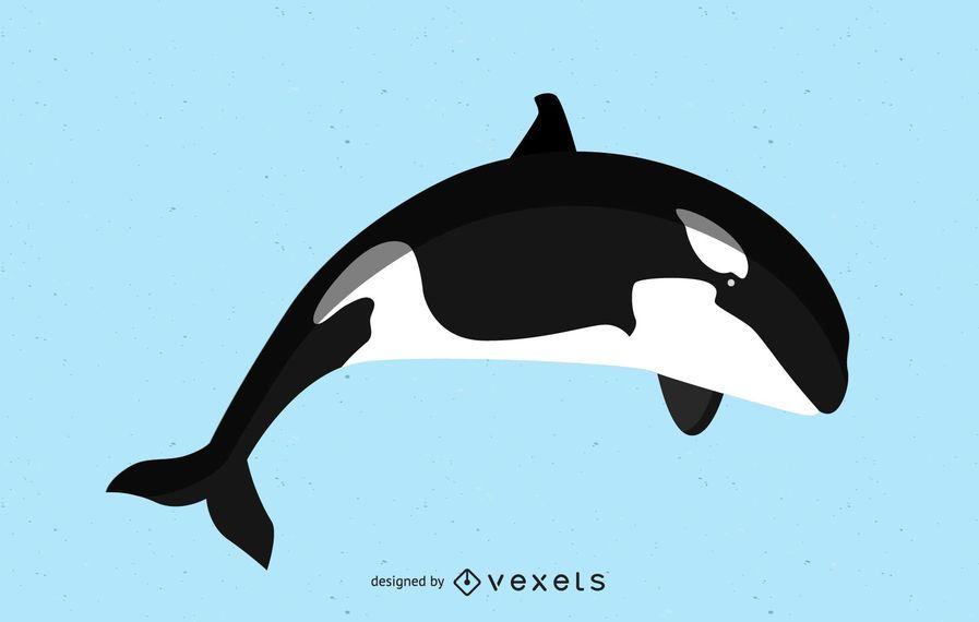 Imagen vectorial de ballena asesina