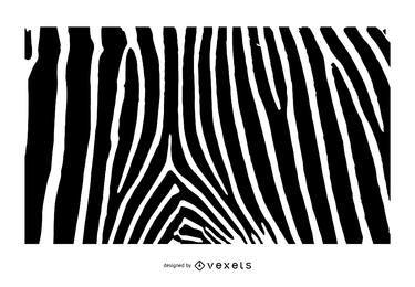 El estampado de zebra