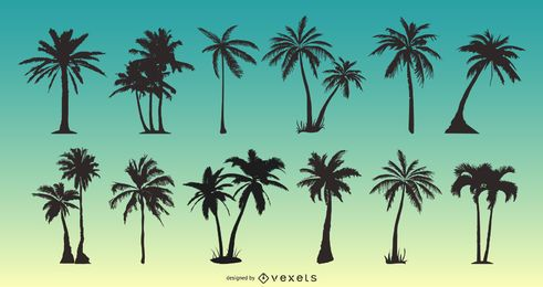 Fondo palmeras 8