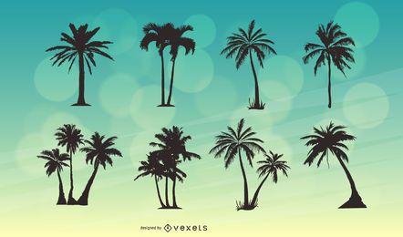 Palmehintergrund 8