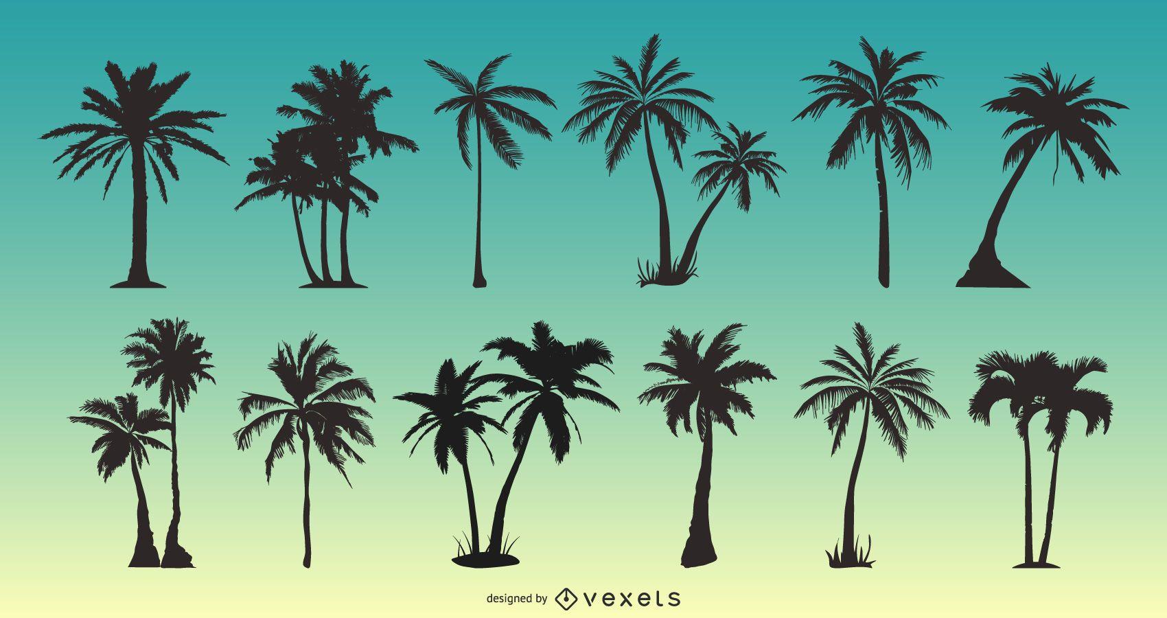 Paquete de silueta de palmera
