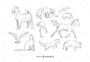 10 mascotas de animales de vectores