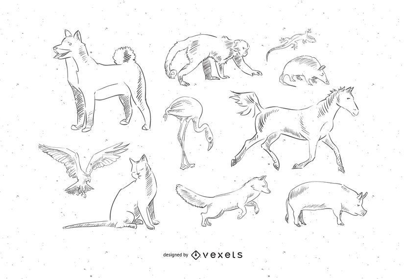 10 mascotas animales vector