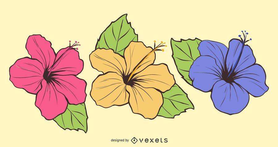 Flor livre vector-3