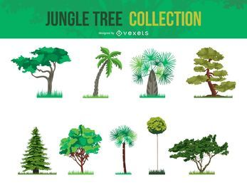 Colección Vector Jungle Tree