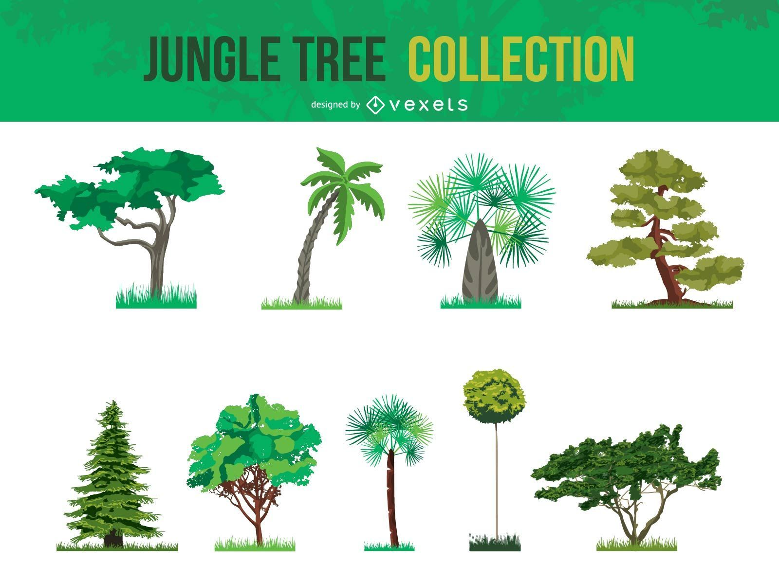 Vektor-Dschungel-Baum-Sammlung