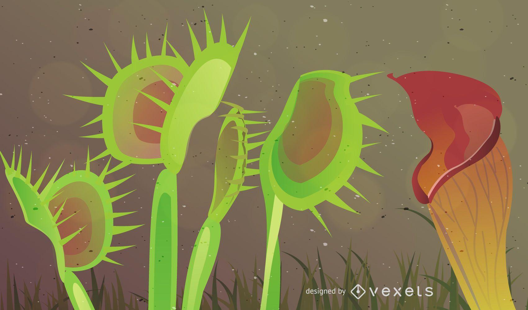 Planta carnívora botánica