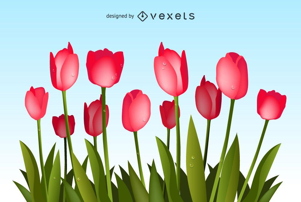 Vector de ramo de tulipanes