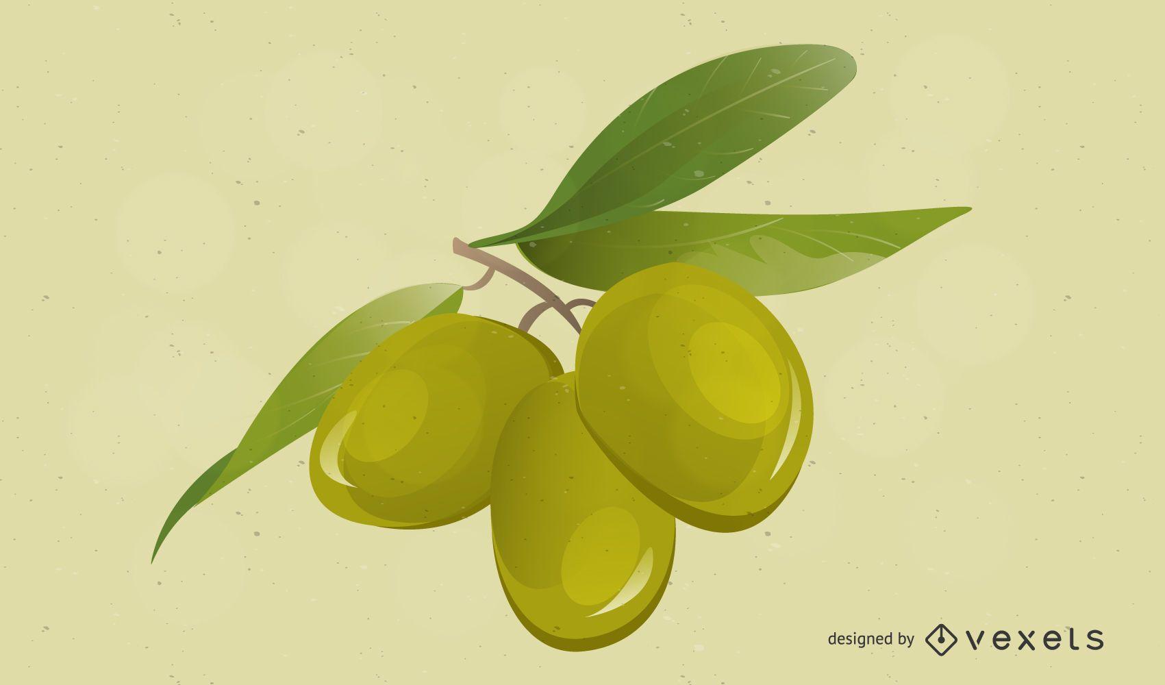 High Detail Olives Vector