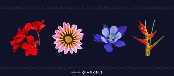Pacote de Flores com Ave do Paraíso
