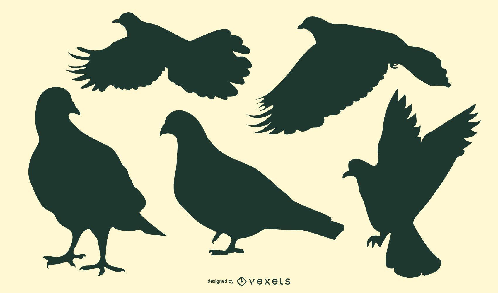 Paquete de silueta de pájaro paloma