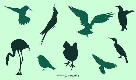 Paquete de pájaro silueta