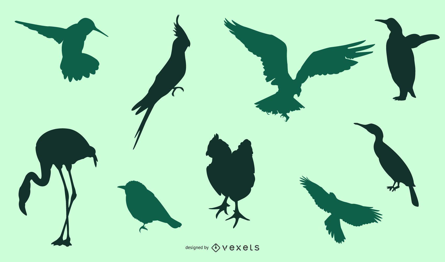 Silhouette Bird Pack