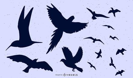 Aves volando en grupo y por separado