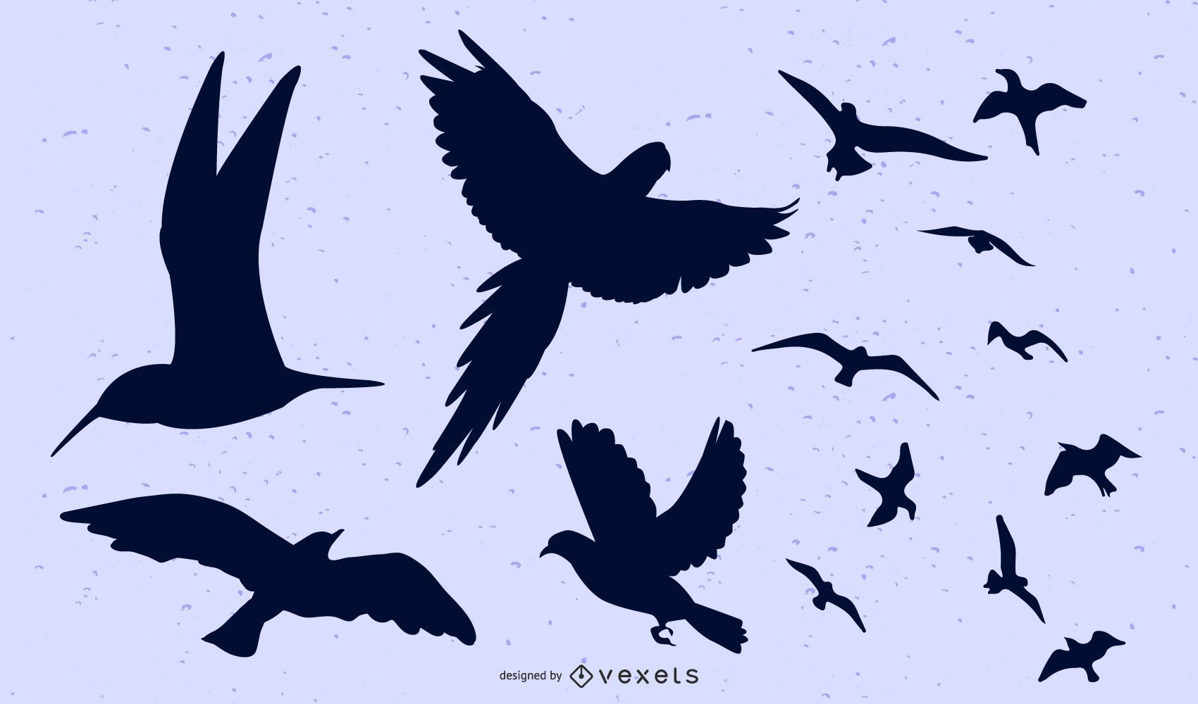 Birds Flying Group and Separately