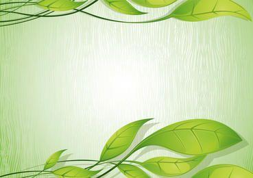 Background Eco