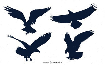 Conjunto de animales águila calva naturaleza